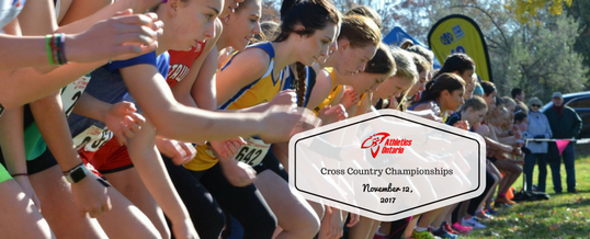 AO 2017 Cross Country Championship Preview